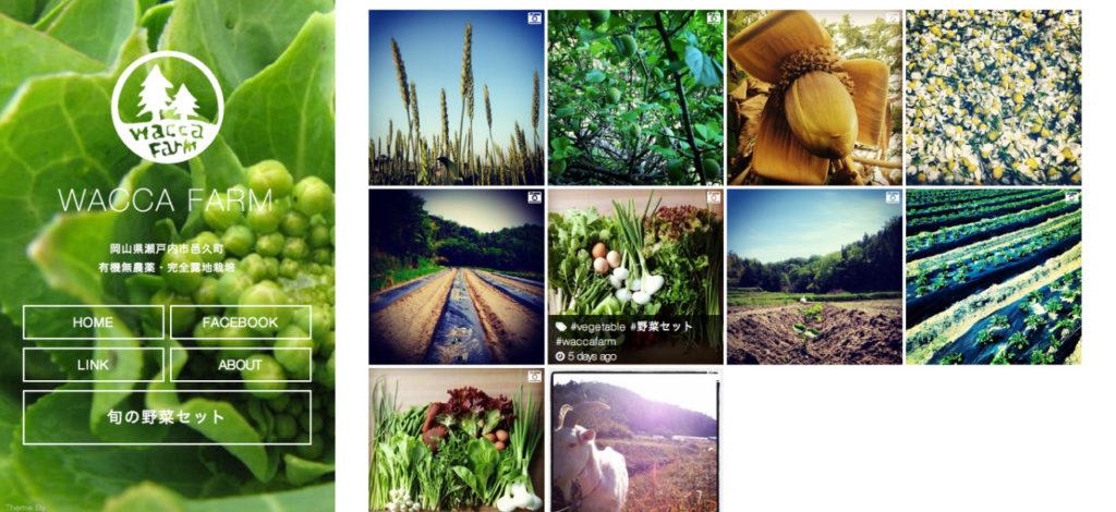 WEBサイト/WACCA FARM